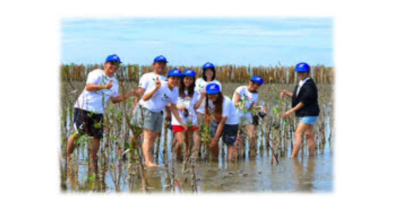 Annual Mangrove forest planting